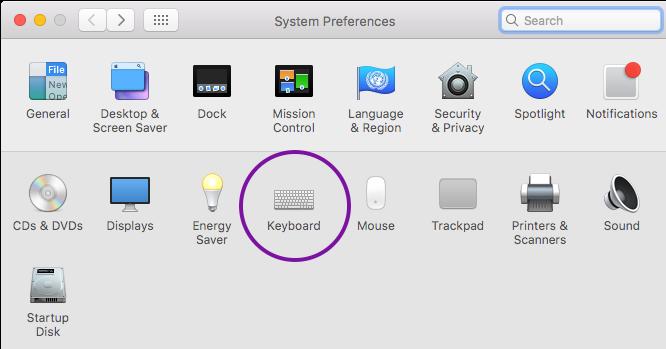 Russian Keyboard (Mac) - NU Online Language Placement Tests